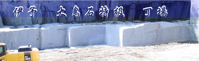 日本の銘石 大島の丁場