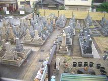 泰聖寺墓地風景