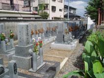 尊重寺墓地風景