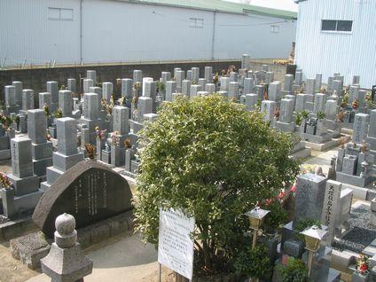 玉江霊園墓地風景