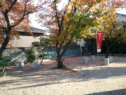 東仙寺の桜